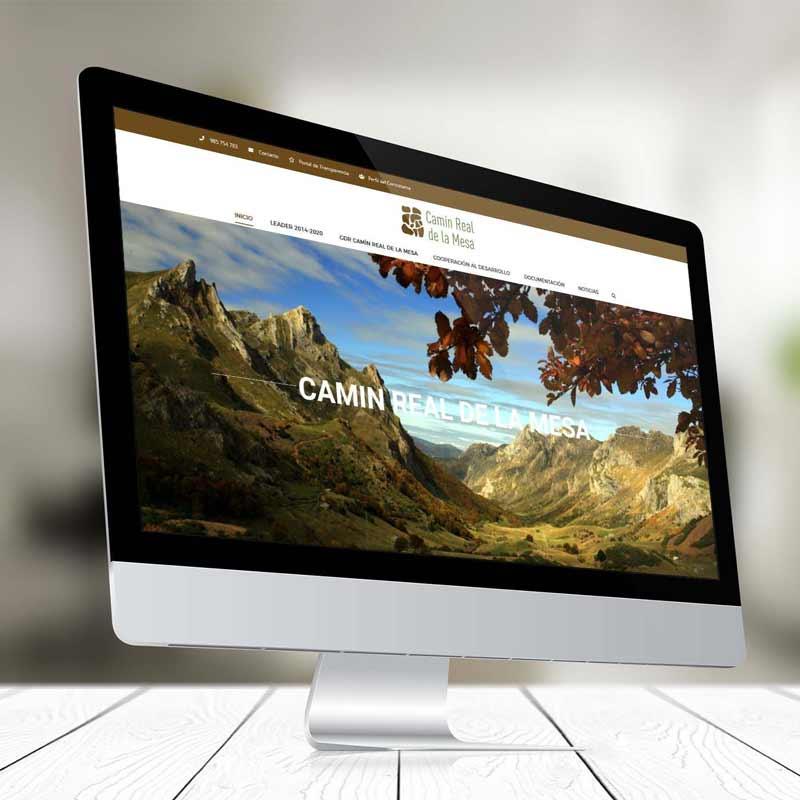 Diseño Web Camin Real de la Mesa