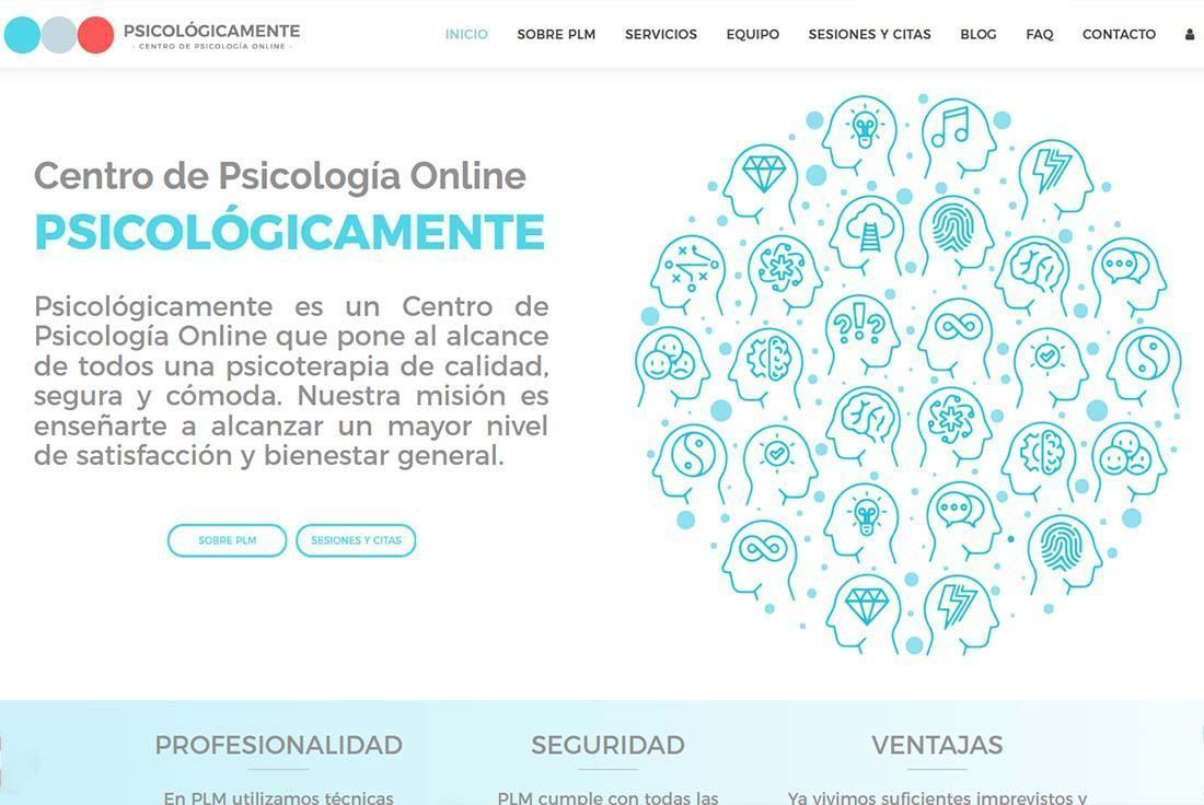 Diseño Tienda Online PLM